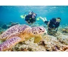 Дайвинг-тур на Красное море, Дахаб. Сентябрь 2019